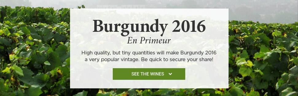 Burgundy 2016 En Primeur. High quality, but tiny quantities will make Burgundy 2016 a very popular vintage. Be quick to secure your share!