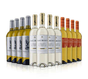 Discover Portugal Whites Case