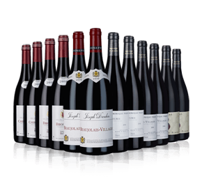 Beaujolais Showcase