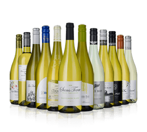 Sauvignon Showdown - Mixed Case